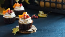 Homemade pumpkin muffins cupcakes decorated with meringue, berries and pieces of pumpkin on black wooden table. Selective focus, copyspace