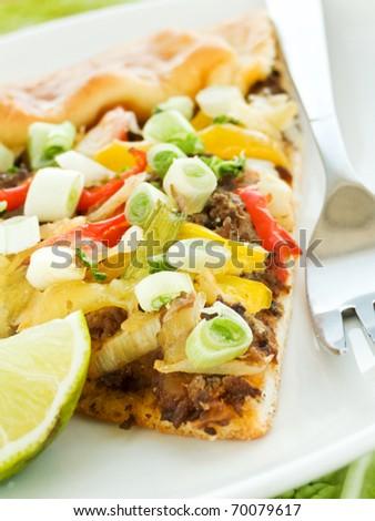 Homemade tart from turkey liver and bell pepper. Shallow dof.