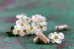 Homeopathy globules homeopathy, naturopathy and alternative medicine. Alternative homeopathy