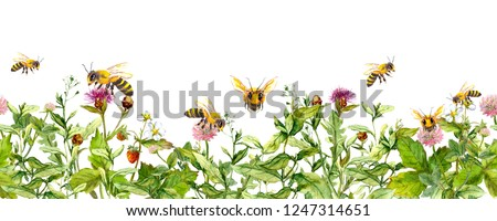 Honey bees in meadow flowers, summer grasses. Seamless floral horizontal border. Watercolour Stock photo ©
