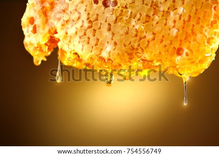 Honey dripping from honey comb on yellow background. Thick honey dipping from the honeycomb. Healthy food concept, diet, dieting
