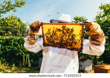 honey production and bees keeping