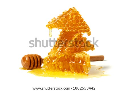 Honeycomb and curative propolis isolated on white background. Wild bee honey. Сток-фото ©