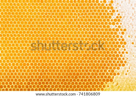 honeycomb background. Top view.