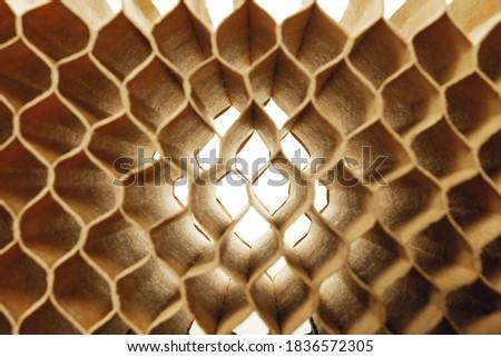 honeycomb cells of cardboard stiffening rib background Foto stock ©