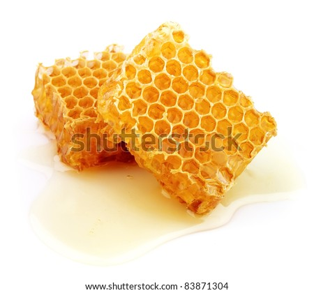 Honeycomb close up on the white