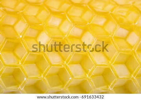 Honeycomb empty cells as background or texture. Macro shot.