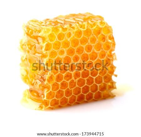 Honeycomb in closeup