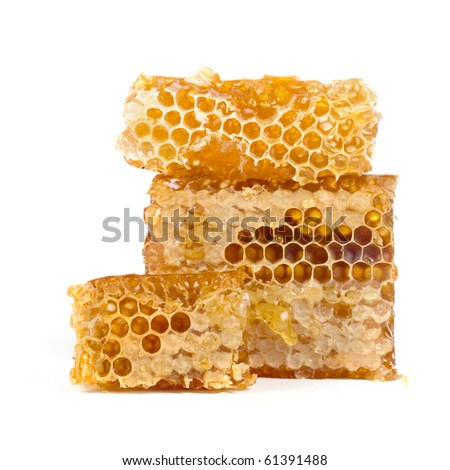 Honeycomb isolated on a white background