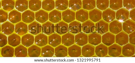 Honeycomb, nectar and light reflected from its surface. Nectar filled the new honeycombs. The light reflected from its surface gives a glare in the form of spectra.