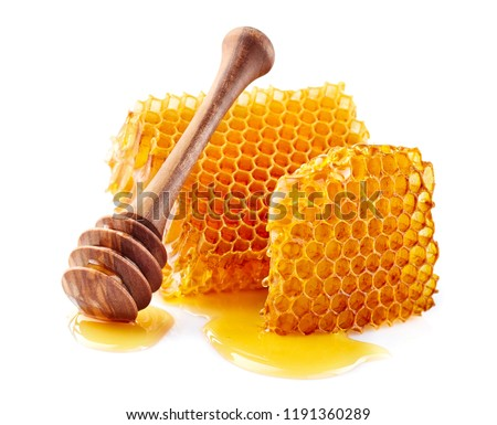 Honeycomb with honey on white background