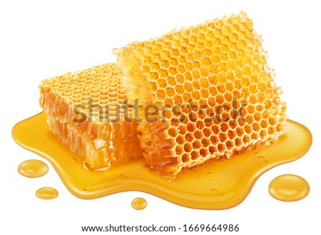 Honeycombs and sweet sticky honey puddle isolated on white background.