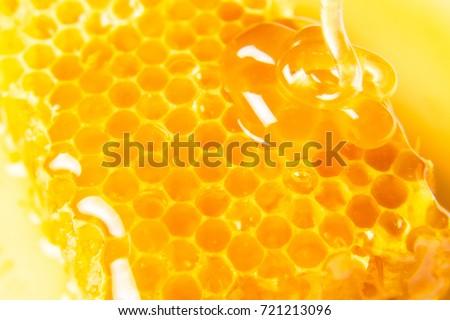 Honeycombs in closeup, Honey, Honeycomb, Honey Bee.
