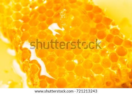Honeycombs in closeup, Honey, Honeycomb, Honey Bee