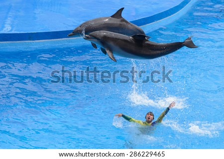 HONG KONG - MAY 6: Dolphins and their trainers perform onstage at Hong Kong Ocean Park Theater on May 6, 2015 in Hong Kong.