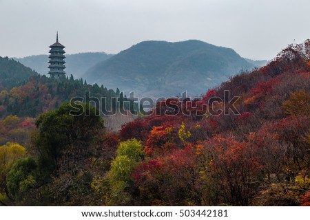 Hong Ye Gu, or Red leaf valley in Autumn, located near Jinan, is one of the 10 new famous tourist attractions of Shandong province, China #503442181