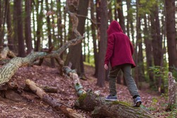 Hooded teenager goes through the forest. lonely child in the woods.  Copy space for your text