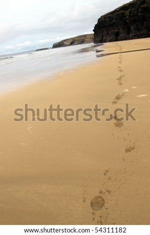 hoof prints trailing into the horizon on ballybunion beach on irelands west coast