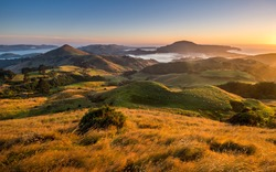 Hoopers Inlet bay and Papanui Inlet Otago Peninsula New Zealand. Beautiful sunrise in Otago district close to Dunedin city. Inlets, sounds, highlands, green hills, meadows, fields, valley with sheep.