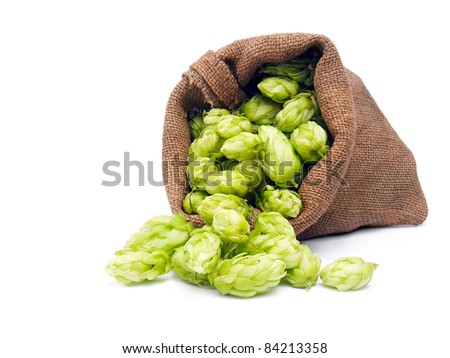 Hop in a burlap bag isolated on a white