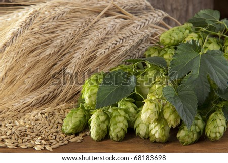 hopcones with barley