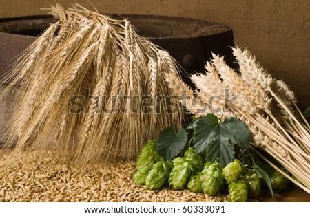 hops with barleycorn