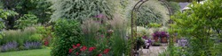 Horizontal banner of Variegated ornamental Japanese willow trees is the focal point of this whimsical summer garden