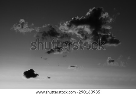 Horizontal black and white sunset cloudscape with flying birds background backdrop