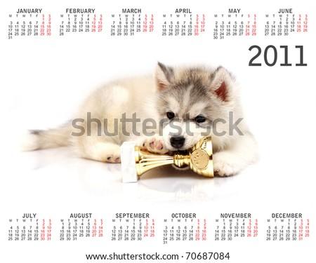 horizontal calendar for 2011 year with Siberian Husky puppy