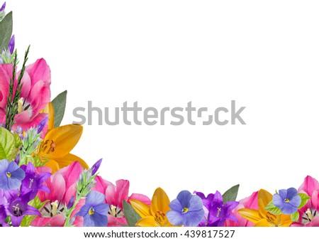 Horizontal Frame Of Flowers And Leaves Lower Left Corner 439817527