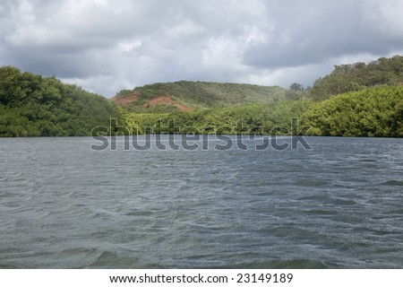 Horizontal image of a calm river on Kauai, from the view of a kayaker.