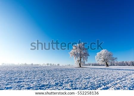horizontal photo with winter...