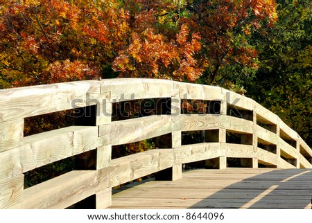 Horizontal photograph of wooden footbridge leading into forest in autumn.
