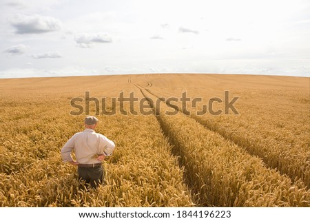 Horizontal shot of a farmer standing in wheat field under the cloudy sky.