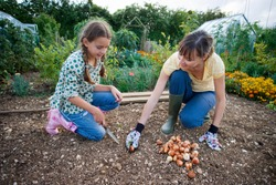 Horizontal shot of a happy mother and daughter planting bulbs with trowel in the garden kneeling down.