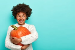 Horizontal shot of glad dark skinned female has Afro haircut, holds big pumpkin, uses healthy product for preparing organic meal, looks happily away, dressed in sweater, models over blue background