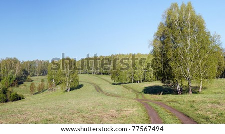 Horizontal summer landscape with fresh green grass and woods
