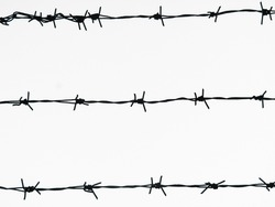 Horizontal thorn fence image. Barbed wire on white background.