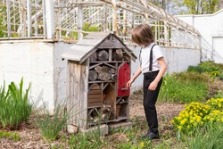 Horizontal view of cute little blond boy in smart clothes examining an insect hotel next to decommissioned glasshouse