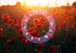 Horoscope astrology zodiac.  Concept of romantic and love between zodiac signs.