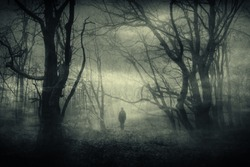 horror forest landscape, surreal haunted woods with scary silhouette at night