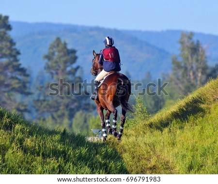 horse #696791983