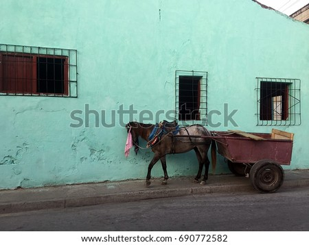 horse and carriage  cuban style