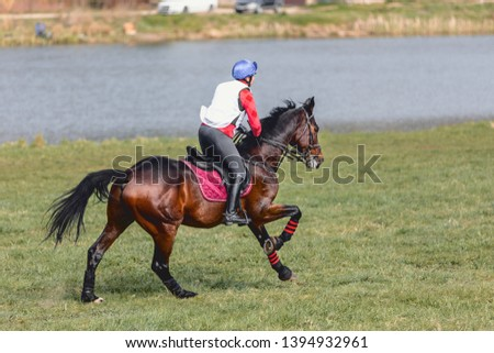 horse and rider during eventing competition