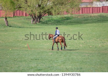 horse and rider losing eventing competition