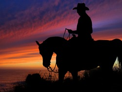 Horse And Rider Silhouette Sunset