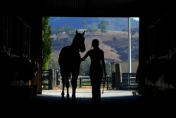Horse and woman silhouette in barn showing a strapper walking a racehorse