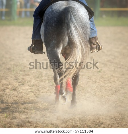 Horse back with raider while walking on dirty ground