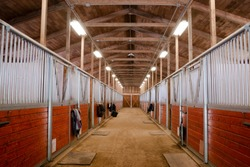 Horse Barn Animal Sport Paddock Equestrian Ranch Racing Stable