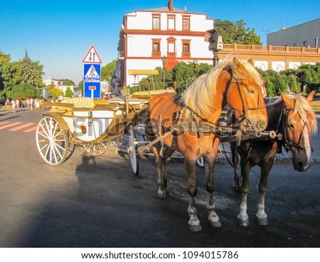 Horse carriage in the city center, near the Odessa Opera Theater. In Odessa, Ukraine  #1094015786